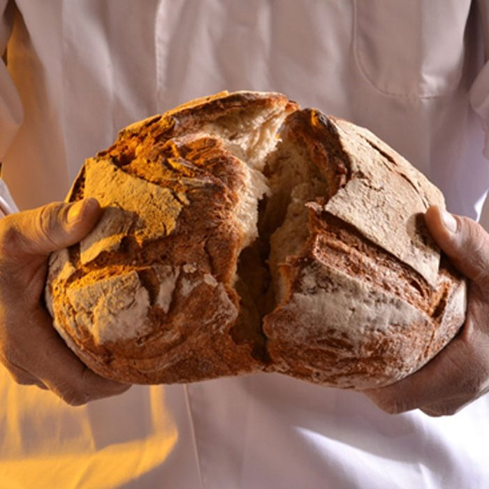 Which Came First— Bread or Beer?